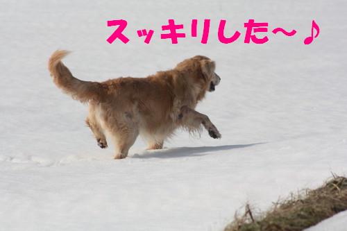 bu-66860001.jpg
