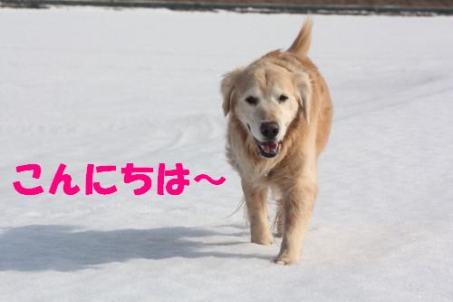 bu-66870001.jpg