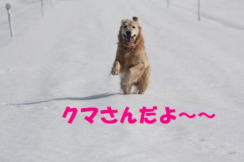 bu-67010001.jpg