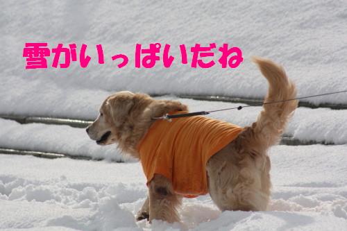 bu-67250001.jpg
