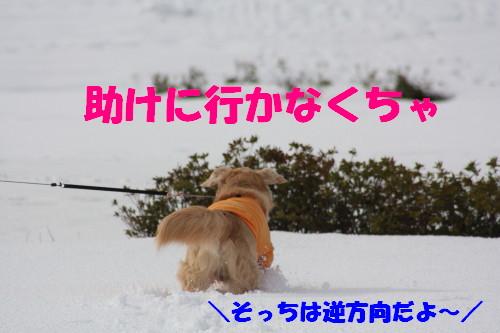 bu-67480001.jpg