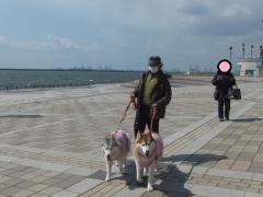018_20120327224151.jpg