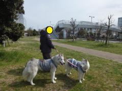 035_20120324004734.jpg
