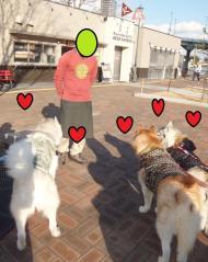 096_20120219225220.jpg