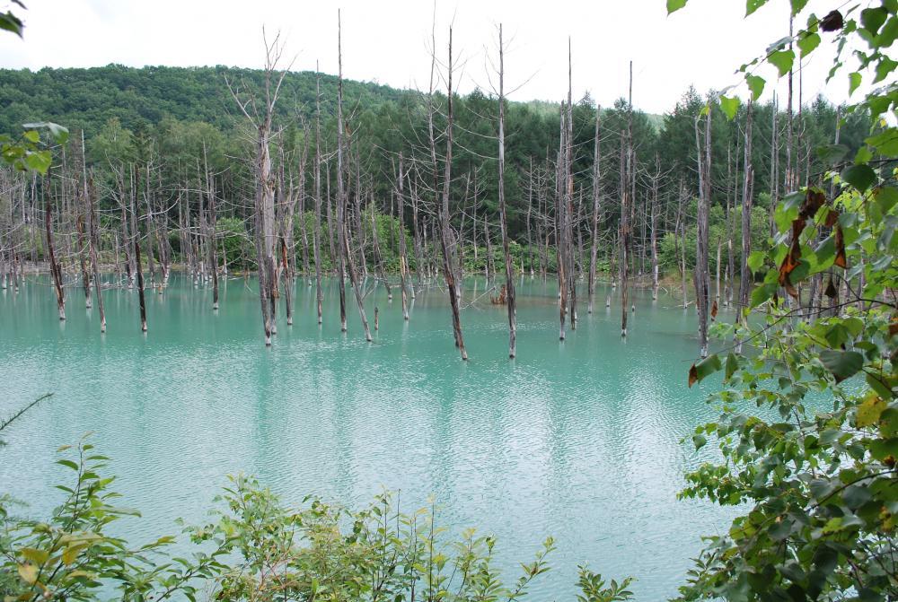 2010.8.10の青池