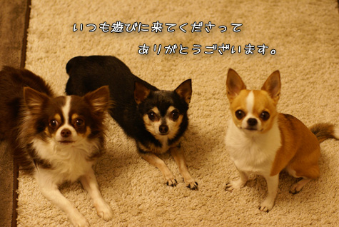 DSC077620128.jpg