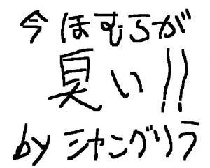 縺ゥ繧・′縺翫¢繧薙■繧・s_convert_20101231030209