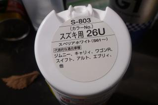 P1010385.jpg