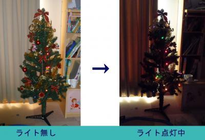 クリスマスツリー2009ー01