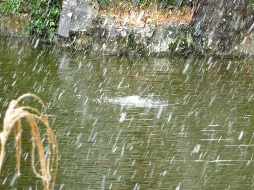 雪景色の伊太祁曽神社2011.02.11-05
