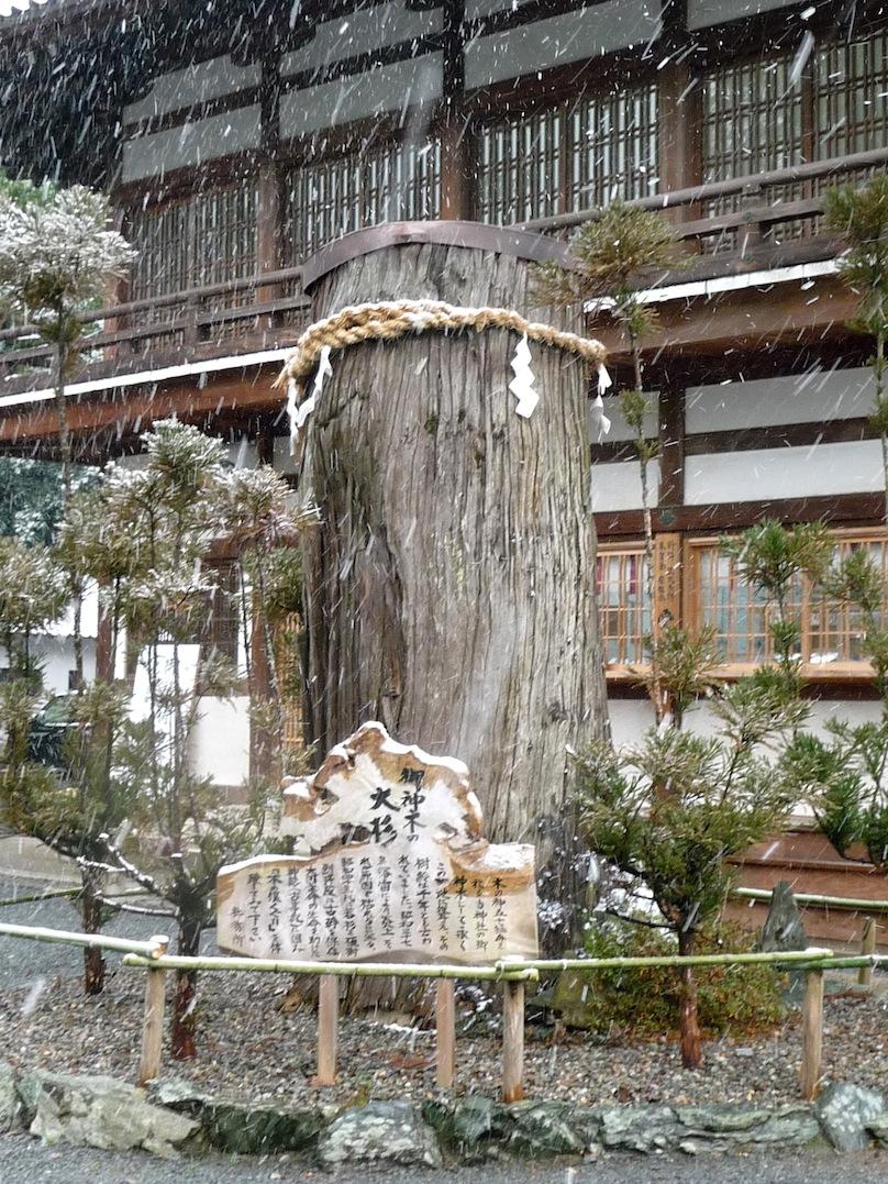 雪景色の伊太祁曽神社2011.02.11-07