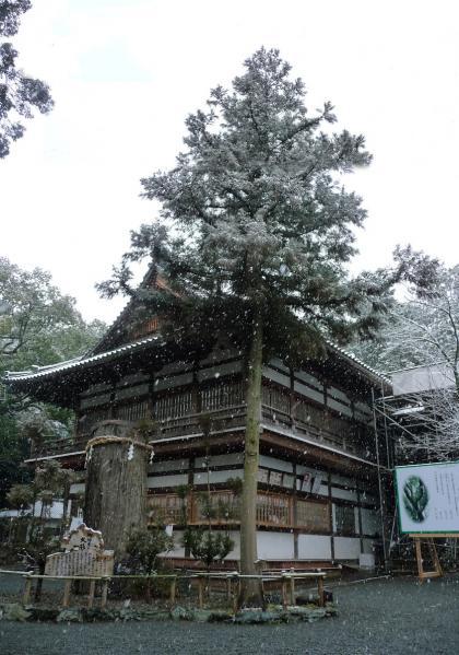 雪景色の伊太祁曽神社2011.02.11-10