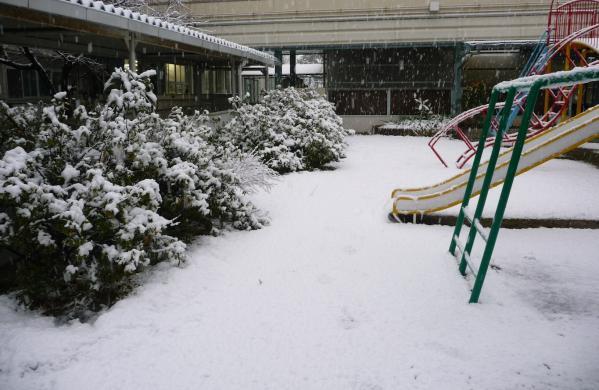 今年のバレンタインは大雪で‥‥02
