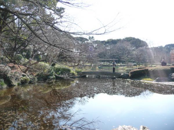 2010.2.20-東京ぶらりひとり旅005~東御苑037~二の丸庭園02