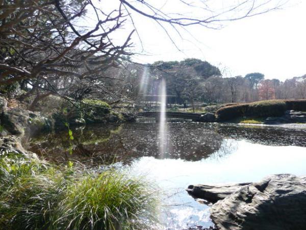 2010.2.20-東京ぶらりひとり旅005~東御苑037~二の丸庭園05