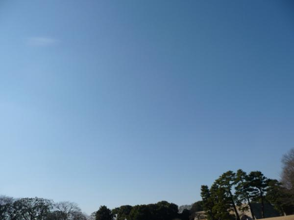 2010.2.20-東京ぶらりひとり旅005~東御苑039~本丸大芝生02