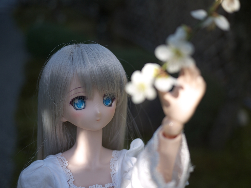 P1020116.jpg