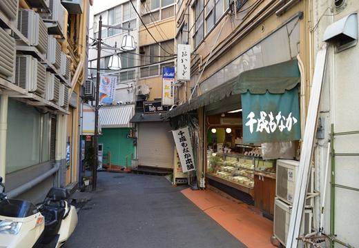 大塚・巣鴨 (28)_R