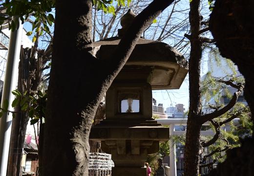 大塚・巣鴨 (76)_R