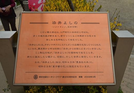 染井村 (39)_R