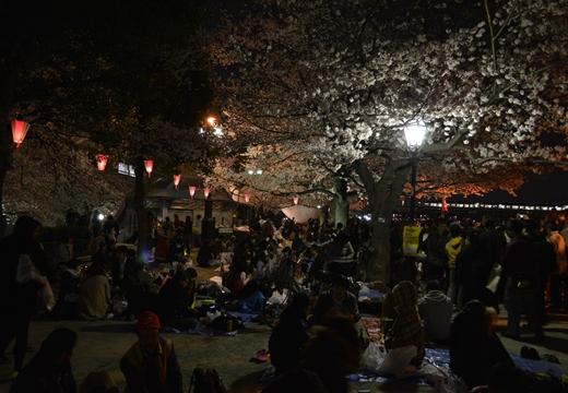 隅田公園 (20)_R