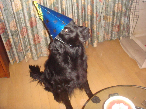 Birthday 1-10