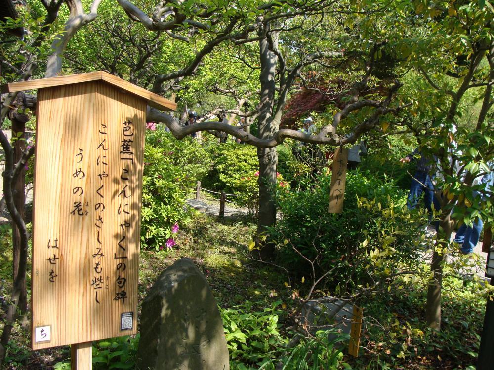 百花園芭蕉の句_convert_20100512112527