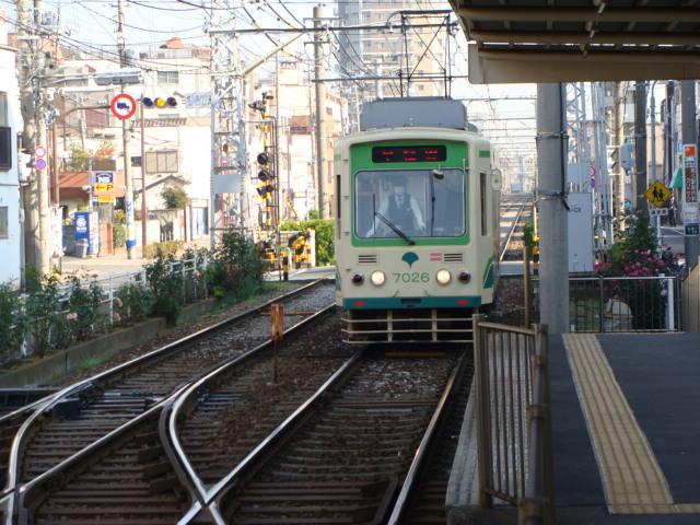 DSC01698.jpg