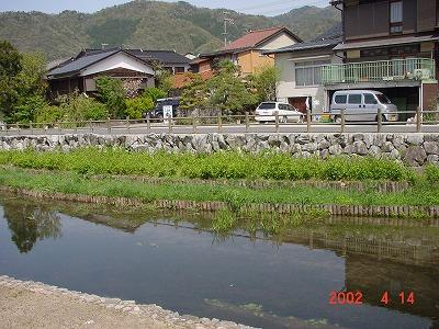 出石川その2