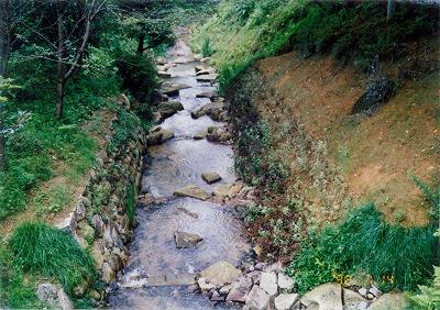 豊田市近自然工法その1