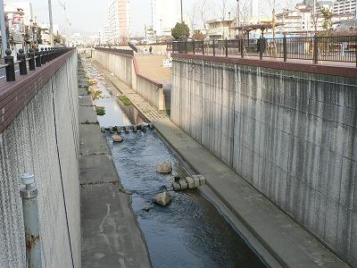 神戸市新湊川