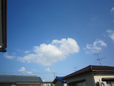 IMG_3143.jpg