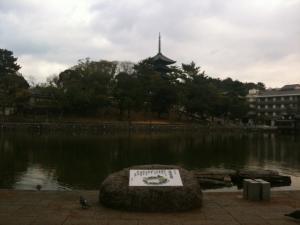 sarusawa0109_convert_20110109105617.jpg