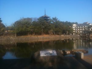 sarusawa0111_convert_20110111154702.jpg