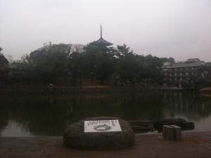 sarusawa0115_convert_20110115112617.jpg