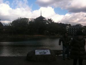 sarusawa0116_convert_20110116132614.jpg