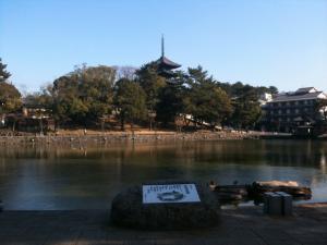sarusawa0119_convert_20110119132812.jpg