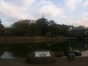 sarusawa0121_convert_20110121112201.jpg