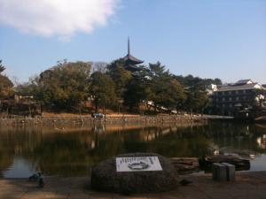 sarusawa0122_convert_20110122110927.jpg