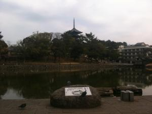 sarusawa0208_convert_20110208111549.jpg