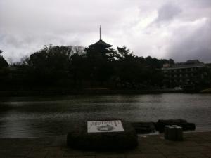 sarusawa0218_convert_20110218112218.jpg