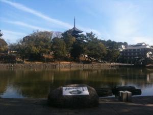 sarusawa0219_convert_20110219110349.jpg