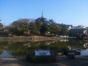 sarusawa0221_convert_20110221113456.jpg