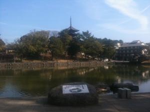 sarusawa0223_convert_20110223111340.jpg