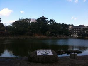 sarusawa1203_convert_20101203110545.jpg