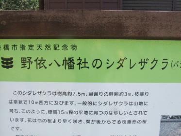 2010_0320野依八幡神社0005