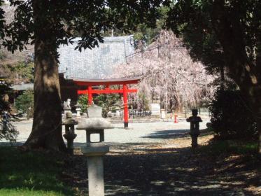 2010_0320野依八幡神社0016
