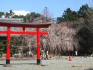 2010_0320野依八幡神社0015