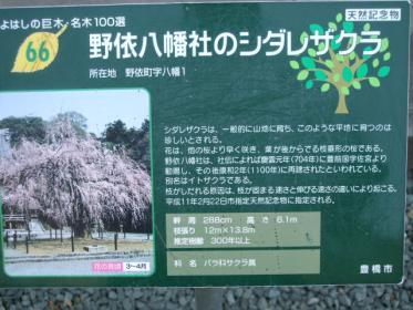 2011_0330_092555-DSCF3728.jpg