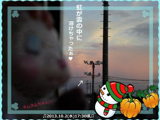 花ブ2013103-5